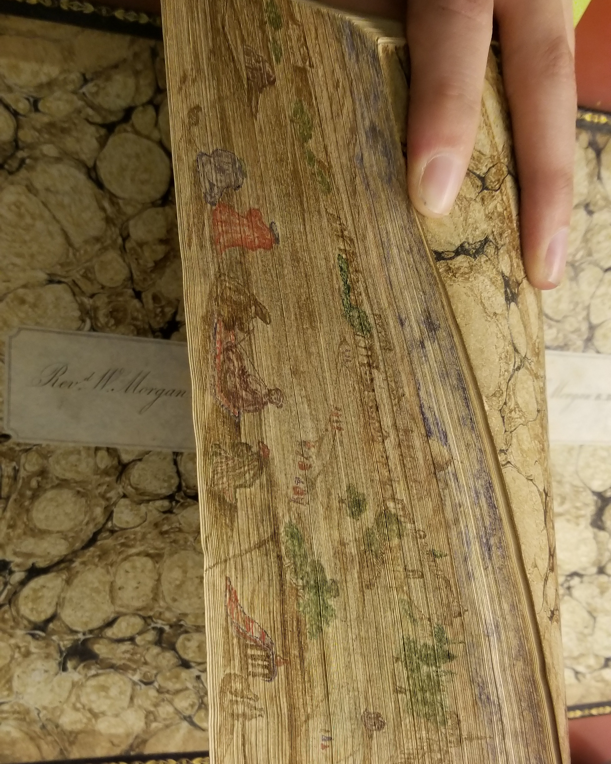 Hebrew New Testament Fore Edge