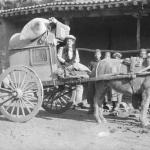 missionary Gertrude Pye (wife of Rev. Watts O. Pye) drives a cart in China