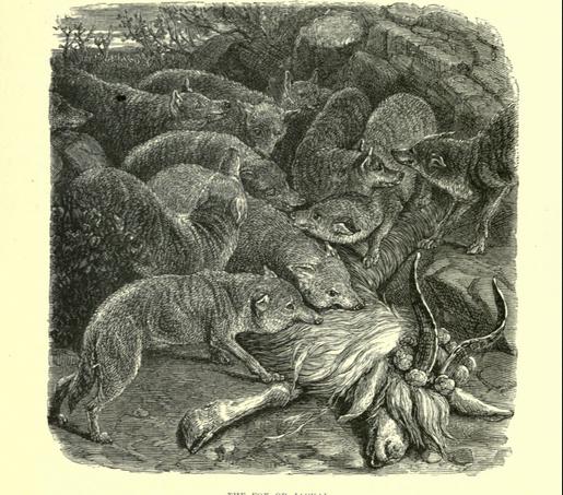 Fox illustration from Wood's Bible Animals